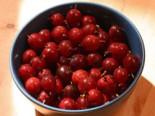 'Stachellose' Stachelbeere 'Captivator' -Neu-, 30-40 cm, Ribes uva-crispa 'Captivator', Containerware