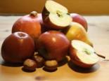 Herbstapfel 'Braeburn', Stamm 40-60 cm, 120-160 cm, Malus 'Braeburn', Wurzelware